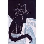 El gato Pío