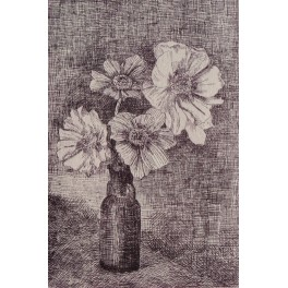Flores (Cosmos)