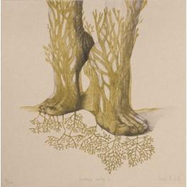 Echando raíces II