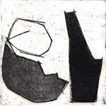 Obelias y quitones 4